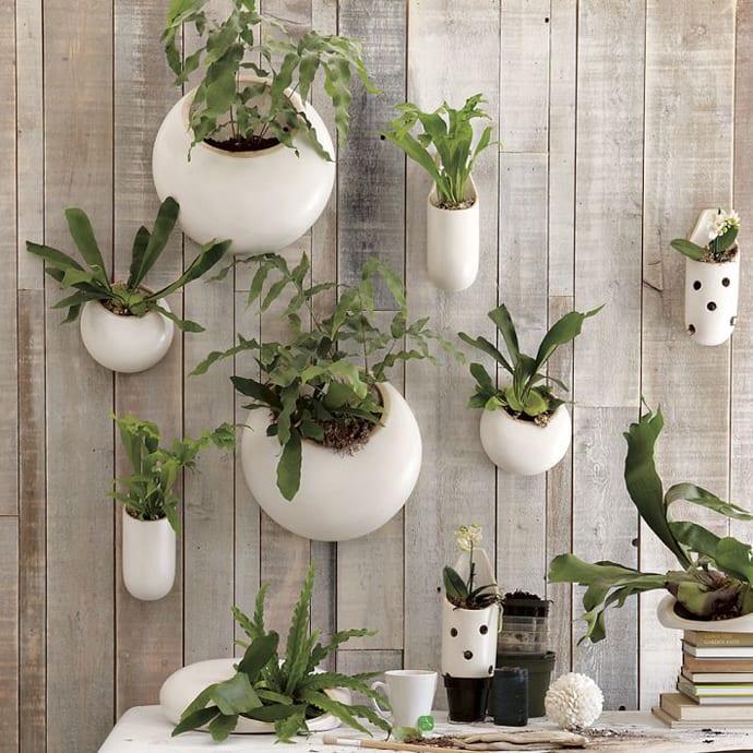 Holzwand mit weißen ausgehängten Pflanzenbehältern