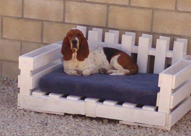 weißes-palettenbett-mit-blauer-kissen-für-hund