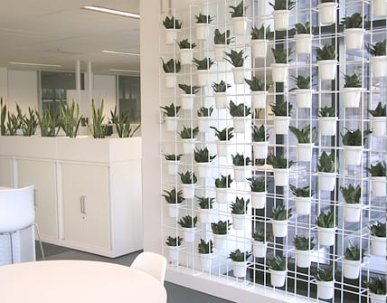 Wand aus weißen Blumentöpfen