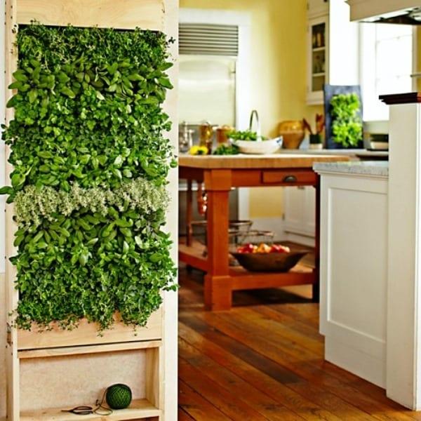 Pflanzen-Wandgestaltung