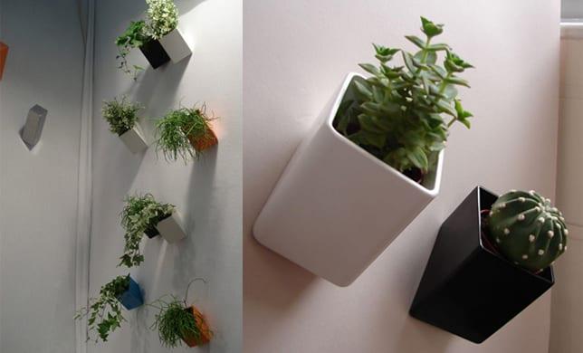 minimalistische Blumentöpfe in verschiedenen Farben