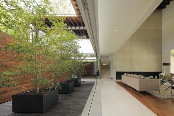 interir desin mit betonboden und holzboden-garten mit holzwand und bäume in großen schawrzen blümentöpfen-wohnzimmer mit Glasschiebefenstern