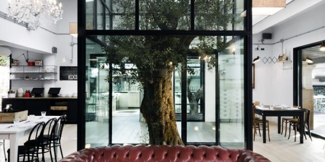Interior design idee mit baum in atrium freshouse for Idee interior design