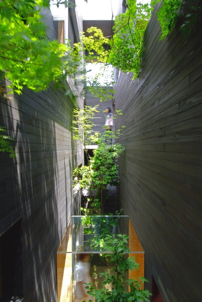 hofgarten im Bürogebäude