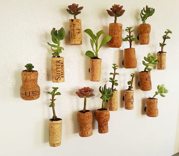 diy cork planters kreative bastelideen mit korken. Black Bedroom Furniture Sets. Home Design Ideas