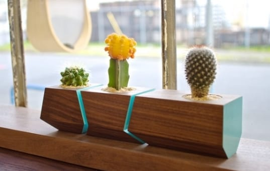 terrarium einrichten-moderne blumentopf aus holz