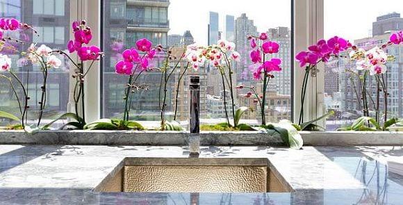 Elegant Fensterbank Dekorieren Mit Orchideen