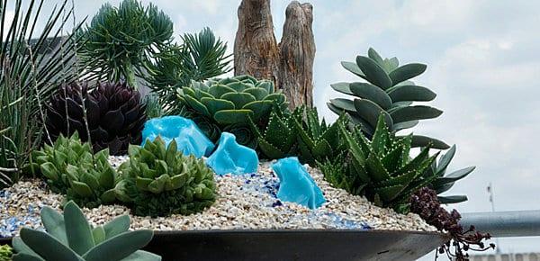 kleiner terrarium gestalten