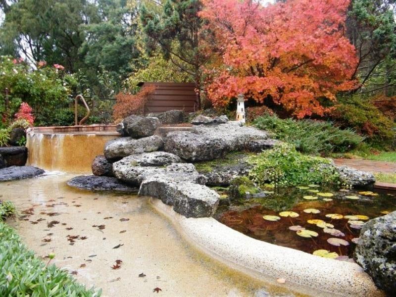 traumgarten gestaltung mit pool