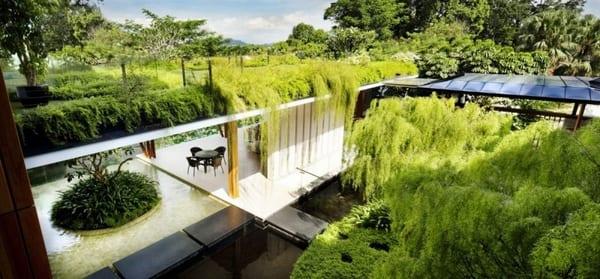 überdachte terrasse mit intensiver Dachbegrünung