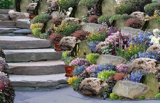 steingarten mit pflanzen