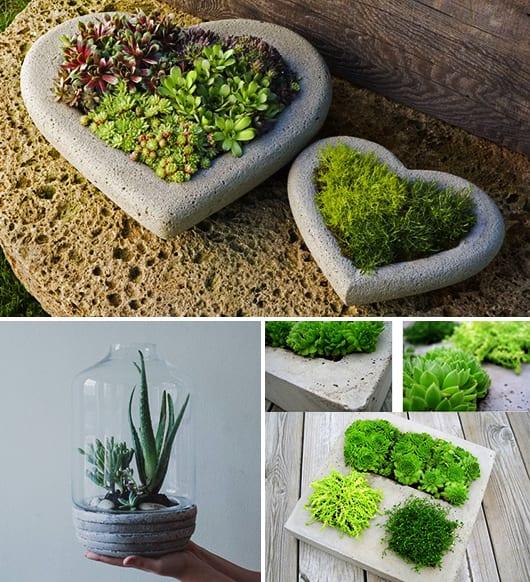basteln mit beton - terrarium dekorieren