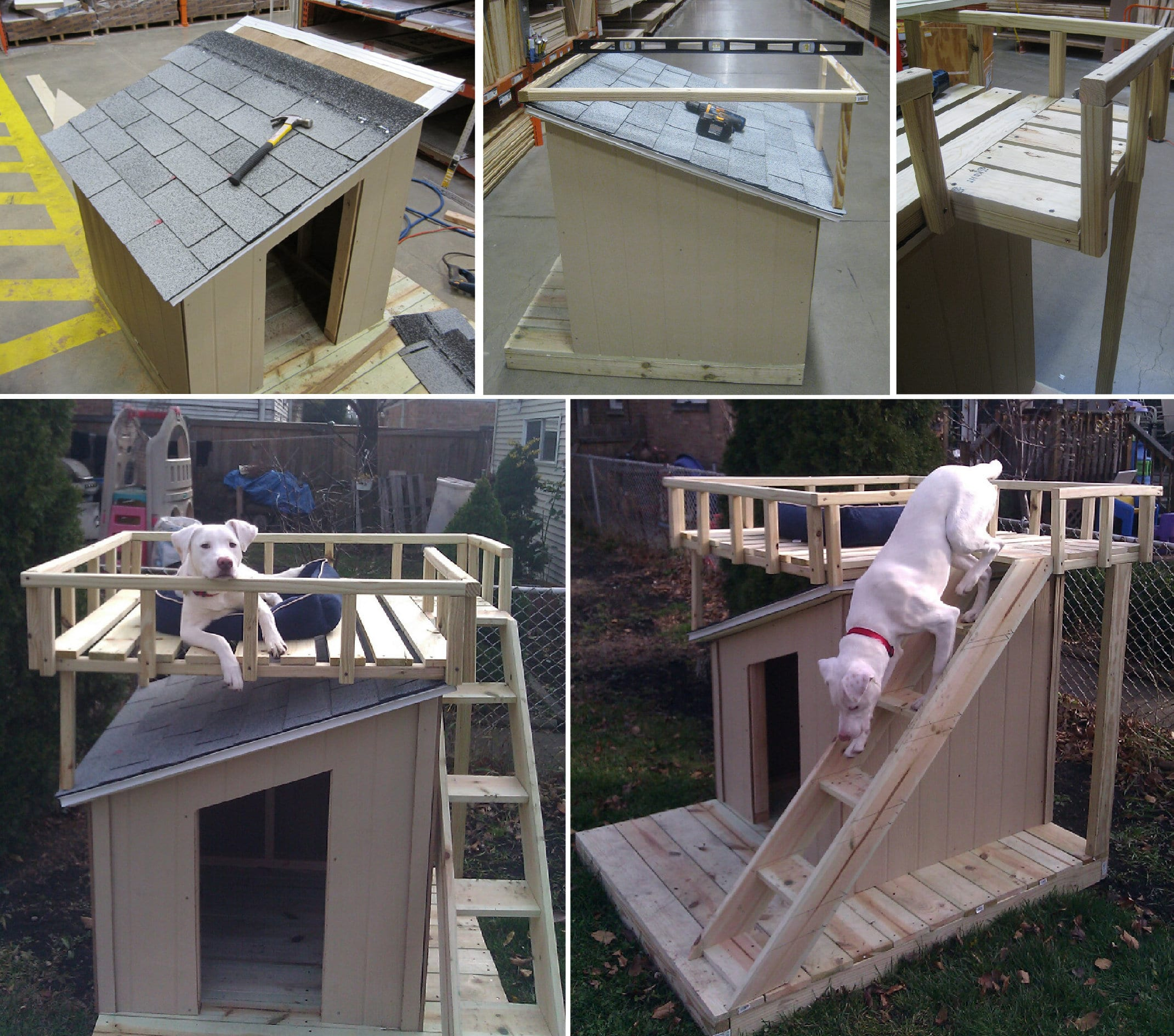 Dog House With Upper Level Deck