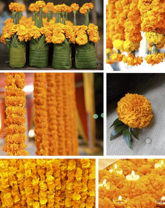 Ringelblume - fantastische Blumendekoration