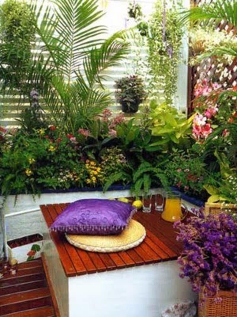 terassen- und balkon bepflanzen