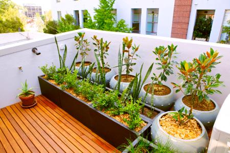 balkongestaltung mit holzboden und topfpflanten