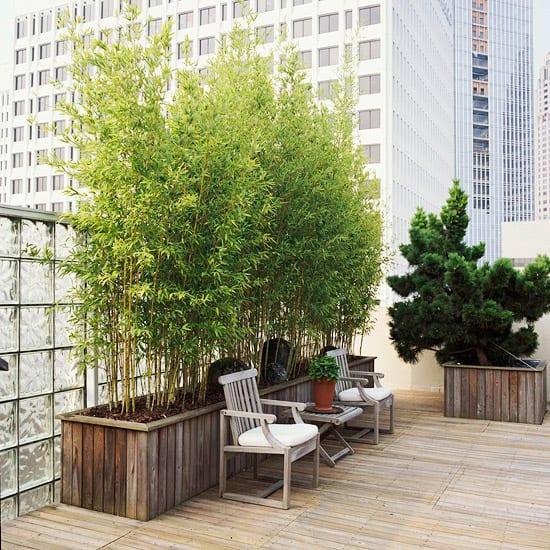 terrasse gestalten mit holzboden und bambus pflanzen