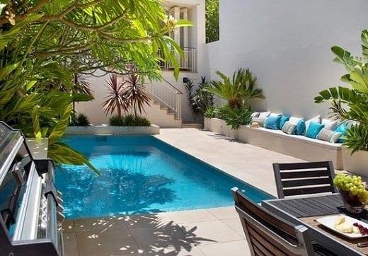 palmengarten auf die terrasse für schöne terrassengarten