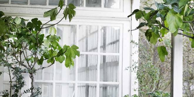terrassengestaltung mit holzterrassendach holz und. Black Bedroom Furniture Sets. Home Design Ideas