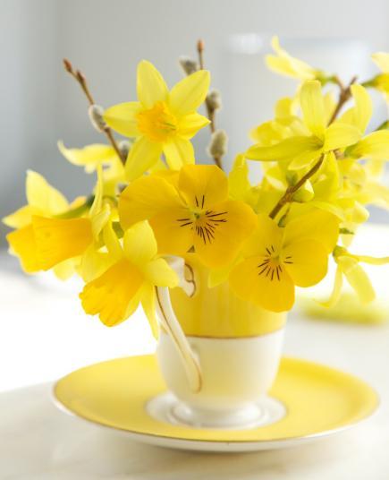 dekoidee frühling mit kafeetasse in weiß und gelb mit frühlingsblumen
