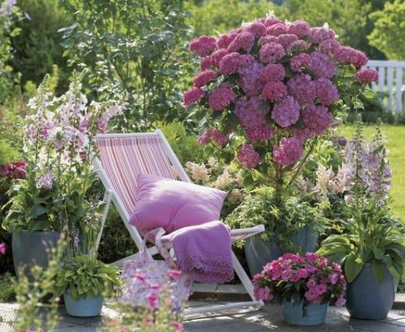 lila gartendeko für lila gartengestaltung