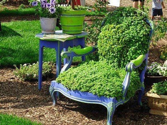 baroksessel als gartendeko mit  grünem  bodendecker bepflanzt