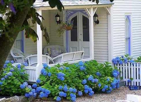 landeshausterrasse in weiß mit blauen bauerngartenblumen gestalten