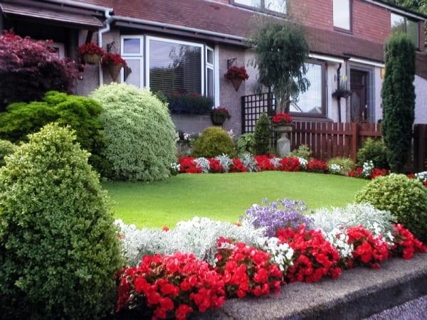 vorgartengestaltung mit weißen und roten blumen