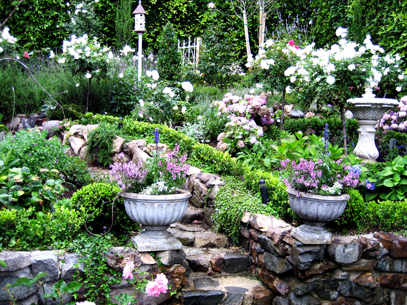 cottage garden mit weißen gartenblumen und gartentreppe mit gartenweg aus steinen