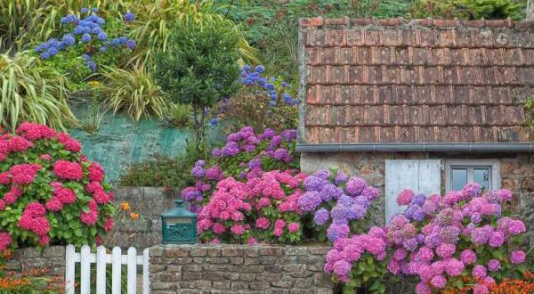 cottage garden - eine der beliebtesten gartenformen - freshouse, Haus und garten