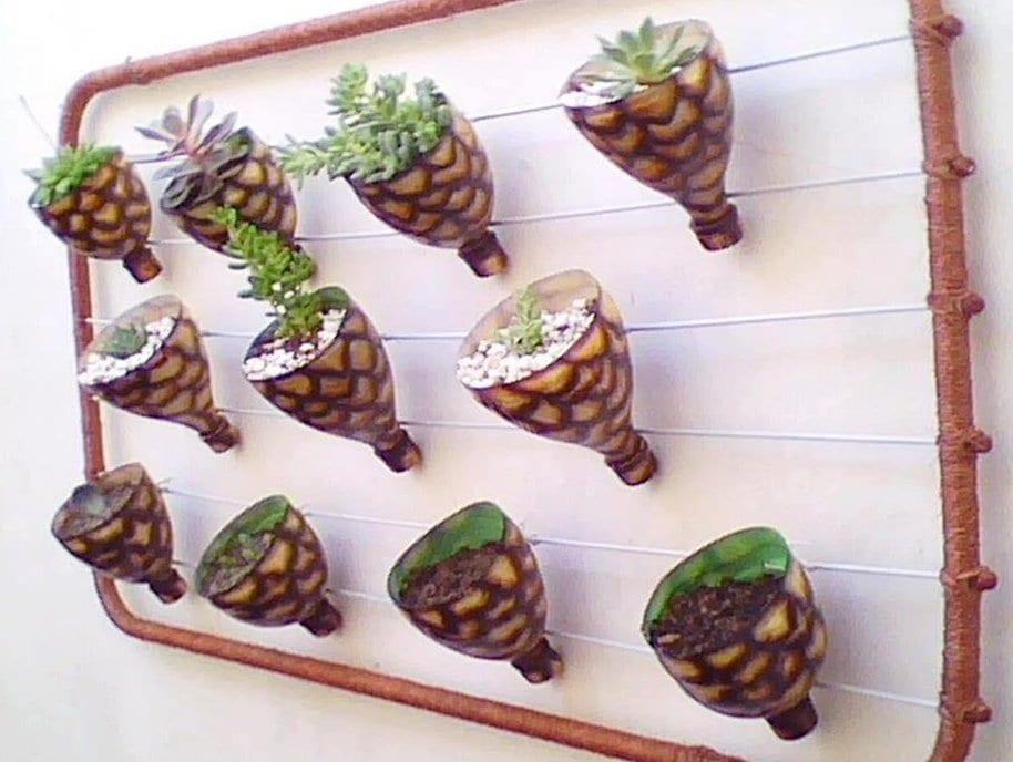 plastikflaschen bastelideen für DIY Terrarium an die Wand