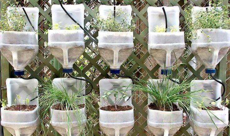 gartengestaltung mit DIY Töpfe aus Plastikflaschen
