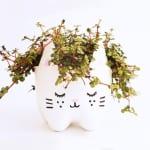 DIY Blumentopf aus Plastikflaschen