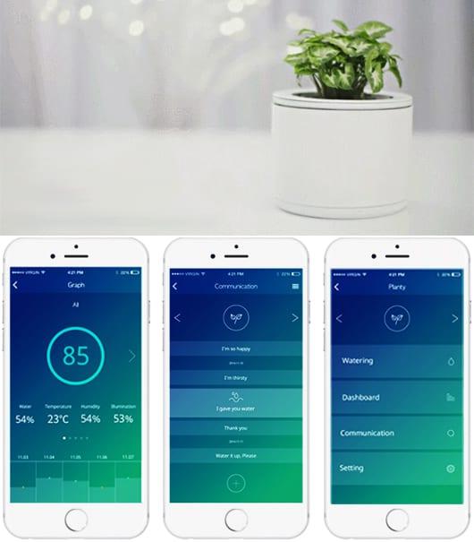 innovation für pflegeleichte Zimmerpflanzen und kreative Geschenkidee