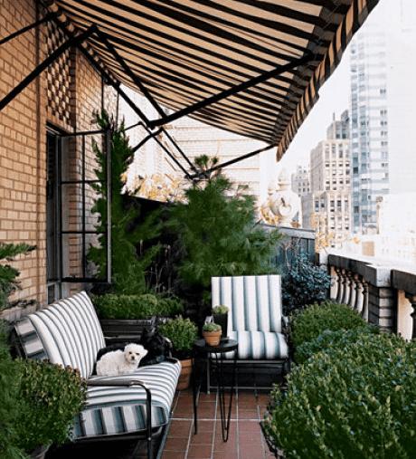 traumgarten auf die terrasse mit markise als sonnenschutz und zur terrassenbeschattung