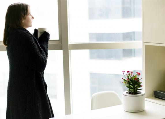geschenkidee f r sie und f r ihre zimmerpflanzen freshouse. Black Bedroom Furniture Sets. Home Design Ideas