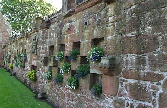 gartengestaltung mit steinmauer und steinpflanzen