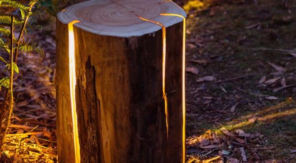 kreative Raumgestaltung und schöne Gartenidee mit beleuchteten Baumstümpfen