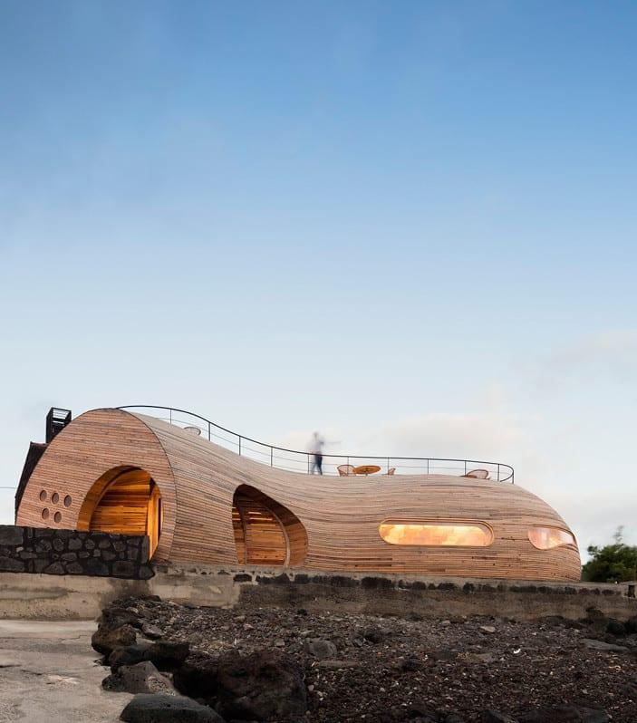 restaurant bar in zylinderform mit dachterrasse aus holz bauen_beispiel für moderne architektur aus holz mit runden öffnungen und oval-fensterband