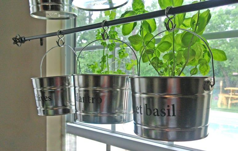 mein kräutergarten anlegen als hängegarten in der küche