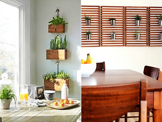 mein kräutergarten als moderne wandgestaltung in der küche_frische kräuter pflege und anbauen