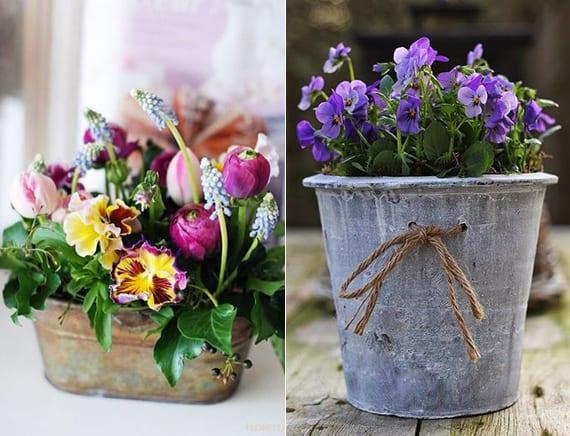 frühlingsdeko ideen mit blauen Veilchen im DIY-Blumentopf aus beton und vintage dekoration mit bunten frühlingsblumen im metallbehälter