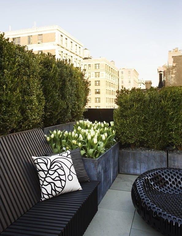 roof top design ideen für moderne dachterrassengestaltung mit buchsbaum und tulpen als akzent zu den schwarzen gartenmöbeln