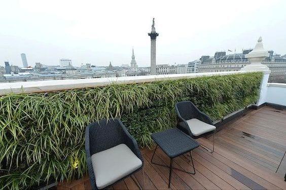 terrassengeländer begrünen als gartengestaltung idee für roof top terrasse mit holzdiele