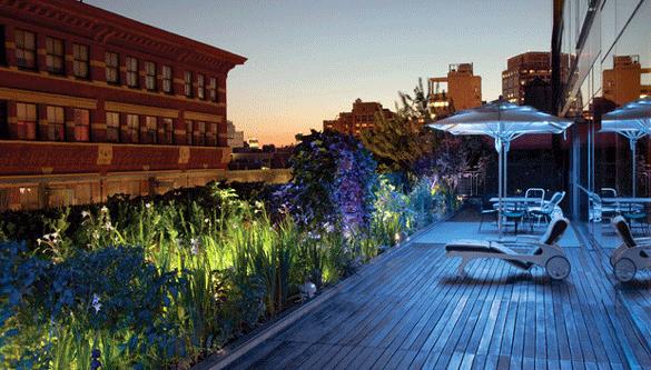 urban gardening ideas für dachterrassen