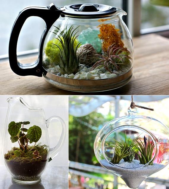 urban garden im glas