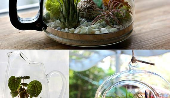 urban garden tipps ideen und beispiele f r urban garden mit terrarium freshouse. Black Bedroom Furniture Sets. Home Design Ideas