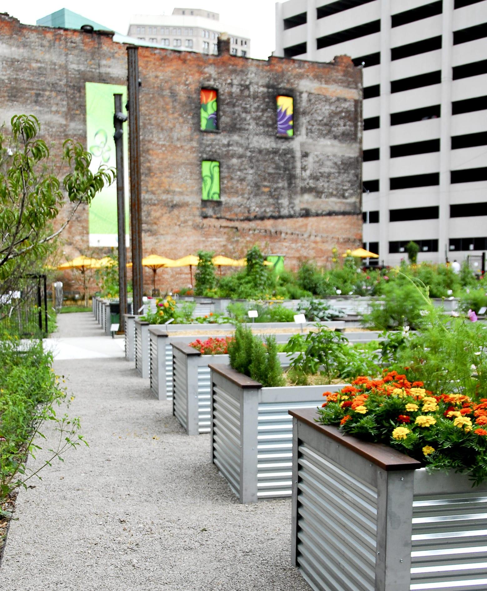 urban gardening ideas für stadtbewohner