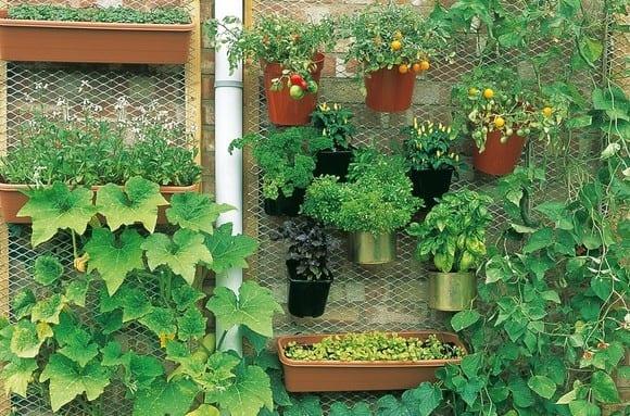 urban gardening balkon_terrassengestaltung mit vertikalem gemüsegarten