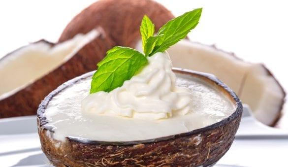 eis selber machen ohne oder mit eismaschine_eisrezept für kokos-eiscreme